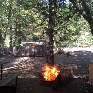 NORTH PINES CAMPGROUND - 37 Photos & 30 Reviews ...