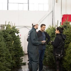 Christmas Tree Lots Near Me.Best Christmas Trees Near Me October 2019 Find Nearby