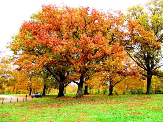 Photo of French Park - Cincinnati, OH, US.