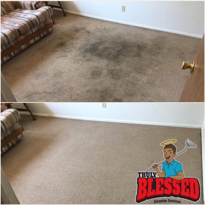 Truly Blessed Cleaning Services Albany