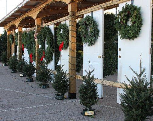 TROSA Tree Lot 1058 W Club Blvd Durham