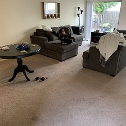 Action Carpet Cleaning - 21 Photos