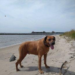 Photo of Plumb Beach - Brooklyn, NY, United States. Tell ya what -- We don't mind Mondays...