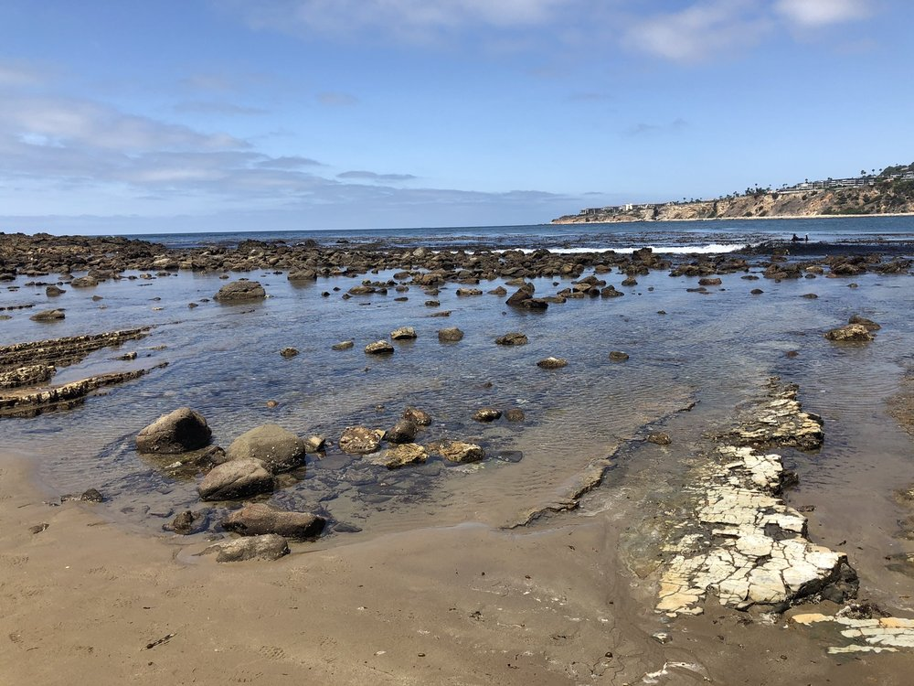 Photo of Abalone Cove Shoreline Park - Rancho Palos Verdes, CA, United States
