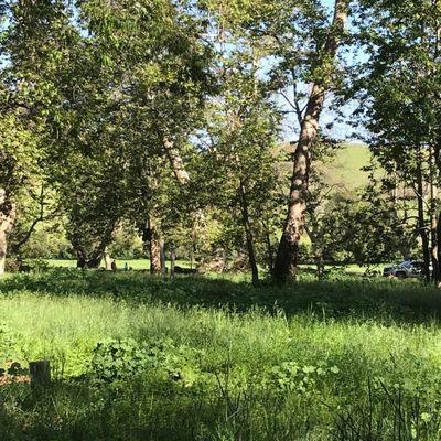 Biddle Regional Park 3500 Lopez Dr Arroyo Grande Ca Parks Mapquest