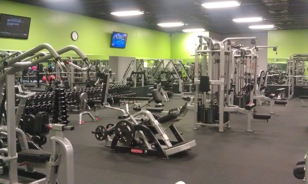 Zone Fitness Clubs 1252 Seven Springs Blvd New Port Richey Fl Health Clubs Gyms Mapquest
