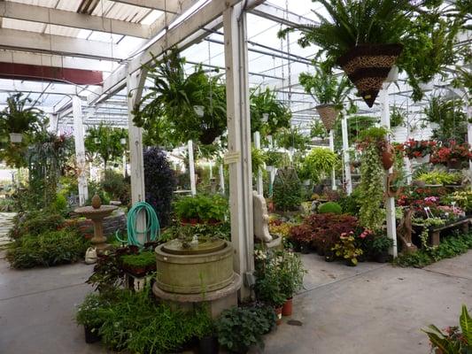 Nurseries Gardening