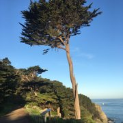 Photo of Lands End - San Francisco, CA, United States. Morning