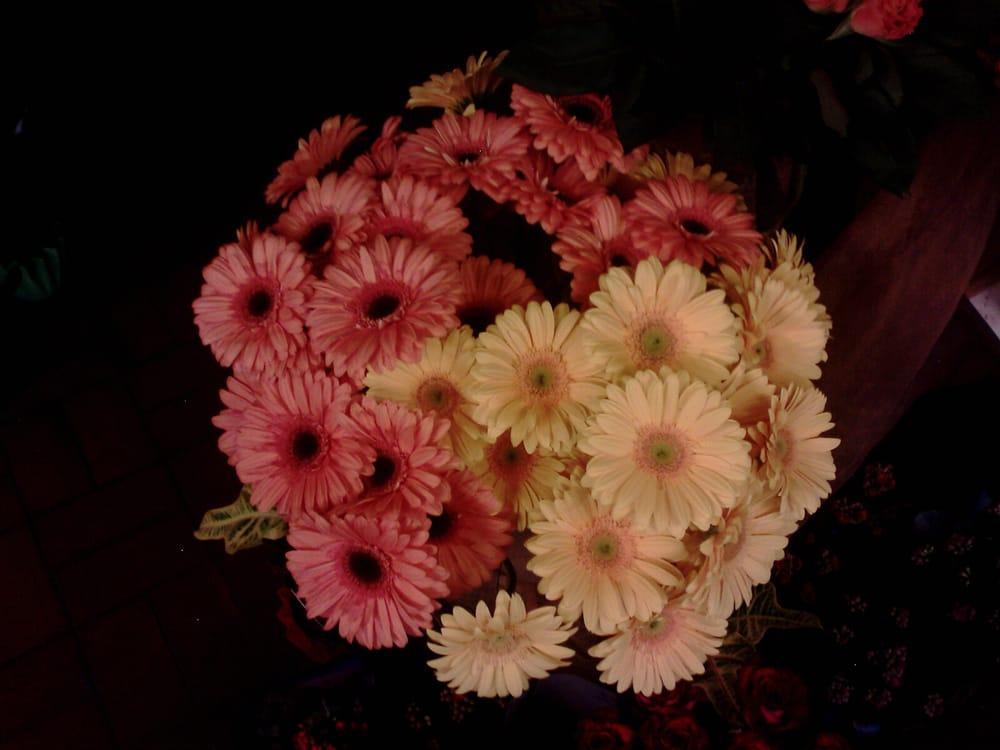 Blumenladen hattersheim