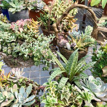 Madden Family Farms 11 Photos 12 Reviews Nurseries Gardening 4312 Rte 27 Princeton Nj Phone Number Yelp