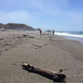 Photo of Portuguese Beach - Bodega Bay, CA, United States. Coarse Sand Beach with Driftwood