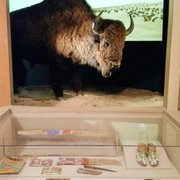 Photo of Autry Museum of the American West - Los Angeles, CA, United States. How large a bison was!