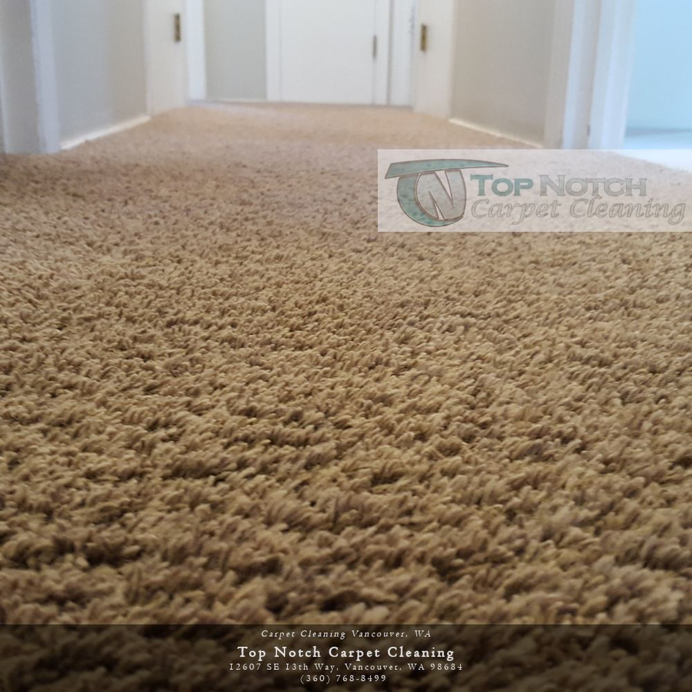 Top Notch Carpet Cleaning - VISIT NOW