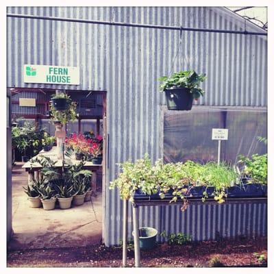 Fanick S Garden Center 1025 Holmgreen Rd San Antonio Tx Florists Mapquest