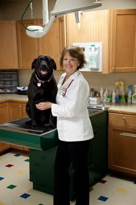 Best Friends Animal Hospital Pet Hotel 4175 E Mission Blvd Fayetteville Ar Veterinarians Mapquest