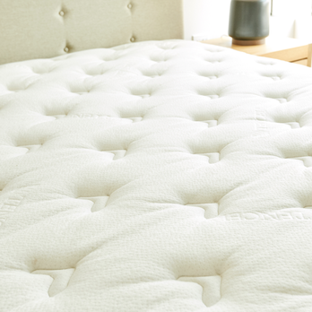 Ortho Mattress Updated Covid 19 Hours
