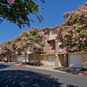 Park Sierra at Iron Horse Trail Apartments on Yelp