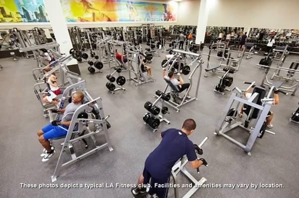 La Fitness 4057 Cattlemen Rd Sarasota Fl Health Clubs Gyms Mapquest
