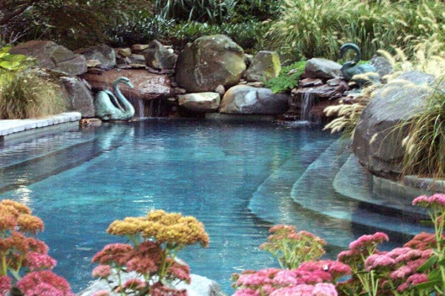 Custom Natural in ground concrete swimming pool in ...