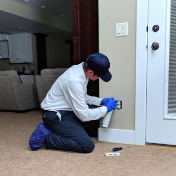 Moxie Pest Control Chantilly Updated Covid 19 Hours Services 23 Photos 404 Reviews Pest Control 14301 Sullyfield Cir Chantilly Va Phone Number Yelp