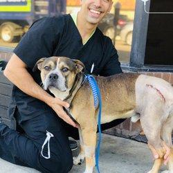 Truecare For Pets 156 Photos 700 Reviews Veterinarians