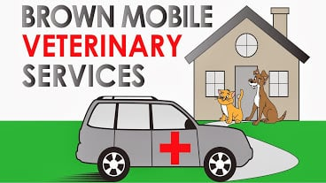 Kristen Brown - Brown Mobile Veterinary Services - 2019 All
