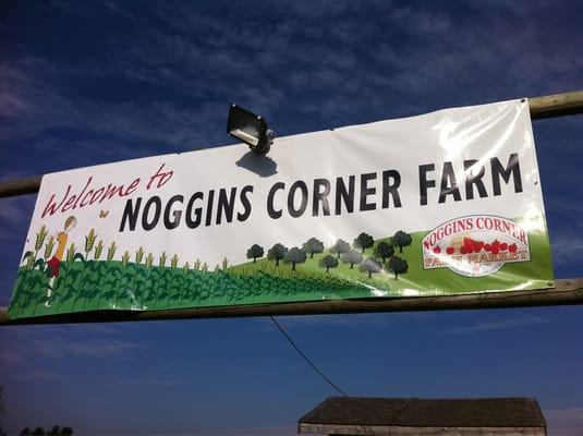 Noggins Corner Farm Farmers Market 10009 Hwy 1 Greenwich Ns Phone Number