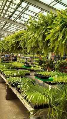 Gale S Garden Center 2730 Som Center Rd Willoughby Hills Oh Garden Centers Mapquest