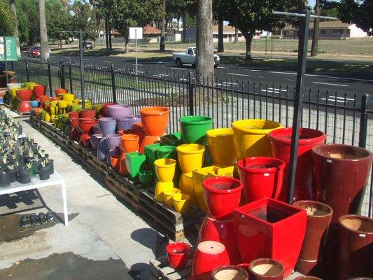 Parkview Nursery 3841 Jackson St