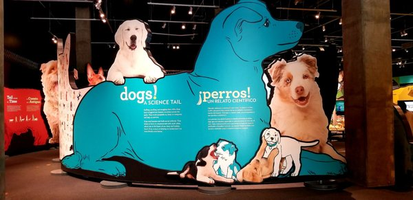 Photo of California Science Center - Los Angeles, CA, US. Entering the interactive doggie exhibit...to know a dog, one must see, sniff, bark, and hear from a dog's point of view...