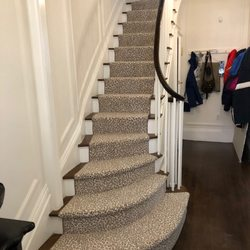 Whole Carpet