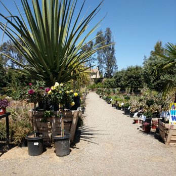 Moon Valley Nurseries Garden Center