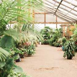 Whitfill Nursery 2019 All You Need To Know Before Go