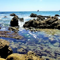 corona del mar state beach parking fee