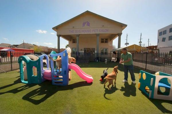 The Dog House Pet Salon 49 Fotos Y 130 Resenas Cuidado De