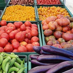 Best Fruit Stands Near Me February 2021 Find Nearby Fruit Stands Reviews Yelp