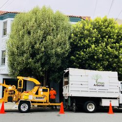 Best Tree Maintenance Near Me December 2020 Find Nearby Tree Maintenance Reviews Yelp
