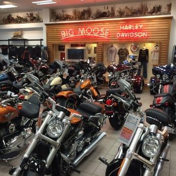 Harley Davidson Portland >> Big Moose Harley Davidson 36 Fotos Y 11 Resenas