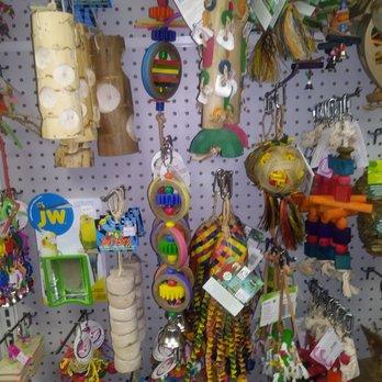 Mr Pet S 17 Photos 36 Reviews Pet Stores 1710 Commercial