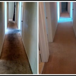 Eatons West Carpet Cleaning - 12 Photos