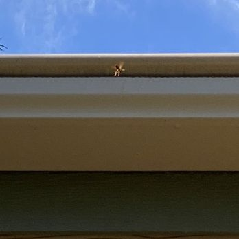 Byers Leafguard Gutter Systems Roofing 5045 Fulton Dr Fairfield Ca Phone Number Yelp