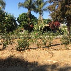 Gardening Near Parkview Nursery