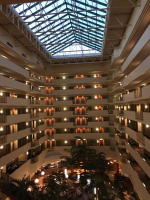 l - Embassy Suites Hotel Usf Busch Gardens