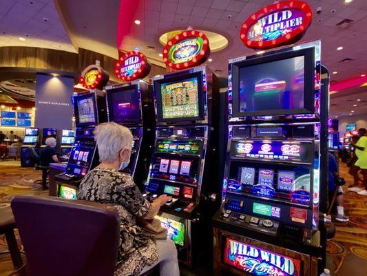Gambling casino conway ark euro viking casino game