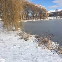 Walking By Wingra Creek In Snow >> Parks In Madison Yelp