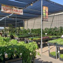 Summerwinds Nursery Tatum 2019 All You Need To Know