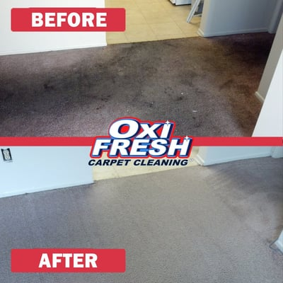 Oxi Fresh Carpet Cleaning 1860 Jamboree Dr Reno Nv Carpet Rug Cleaners Mapquest