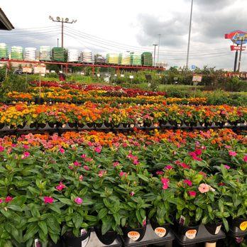 Houston Garden Centers 17 Photos 21 Reviews Nurseries