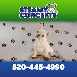 Steamy Concepts 58 Photos Amp 91 Reviews Carpet Cleaning