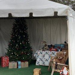 Christmas Trees in Gatlinburg - Yelp